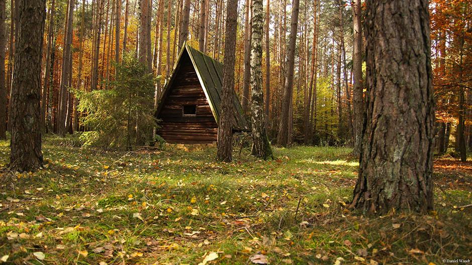Märchenhütte Wald