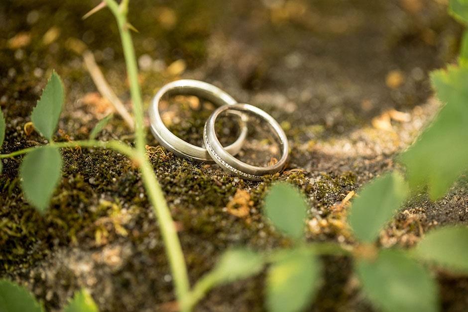 Hochzeitsfotograf-Ringe